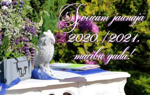 sveicam 2020 2021 mg Copy